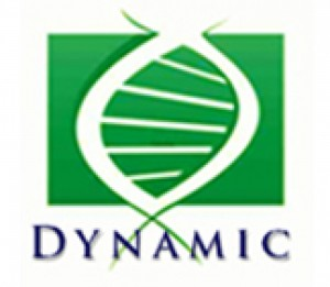 cropped-Logo_Dynamic3.jpg